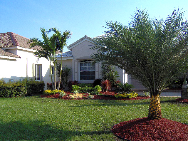 South Florida Tropical Landscaping Ideas Sha excelsiororg